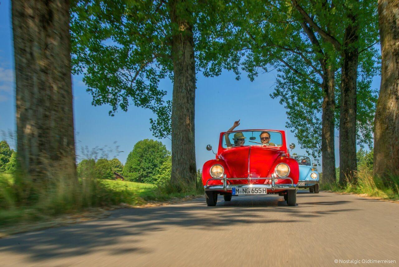 Volkswagen VW Käfer Cabrio 1200 1303 rot red 1965 Exportmodell Export Modell | Nostalgic Oldtimerreisen