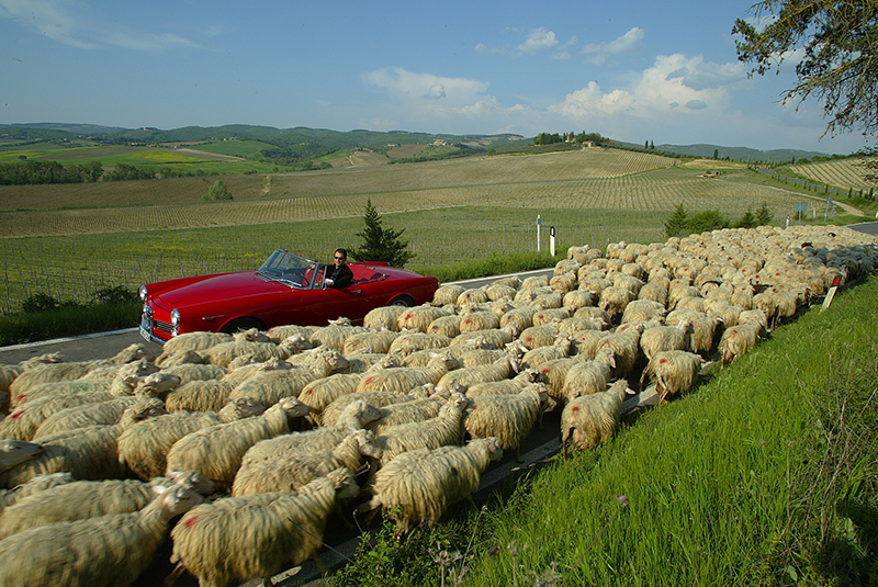 Alfa Romeo 2600 Spider cabrio cabriolet Toskana tuscany | Nostalgic Oldtimerreisen