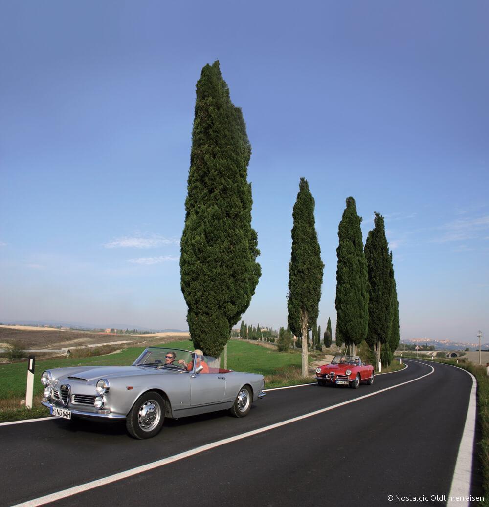 Alfa Romeo 2600 Spider Giulia Giulietta Toskana Zypresse Zypressen| Nostalgic Oldtimerreisen
